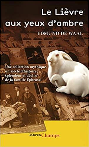 Book Cover: Le Lièvre aux yeux d'ambre